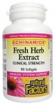 ECHINAMIDE® Anti-Cold 90cps
